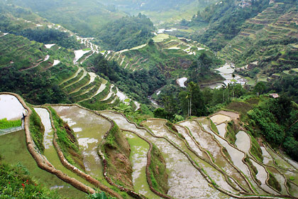 the Banaue rice terraces as seen from the Viewpoint along the Banaue-Bontoc road