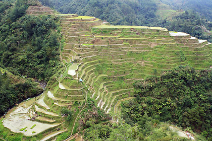 another view of the rice terraces at the Banaue Viewpoint