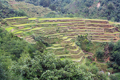 Banaue rice terraces, outer rim
