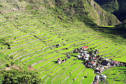 early morning view of the Batad terraces and village