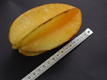 belimbing or star fruit